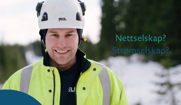 Nettleie2 1